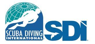 SDI courses