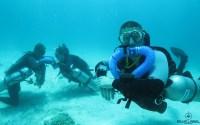 Triton CCR rebreather skills