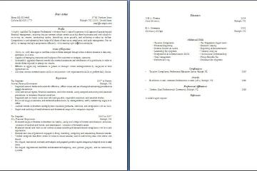 Tax Inspector Resume