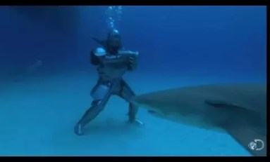 Jak Sir Lance-Shark-Lot poradzi sobie pod wodą?