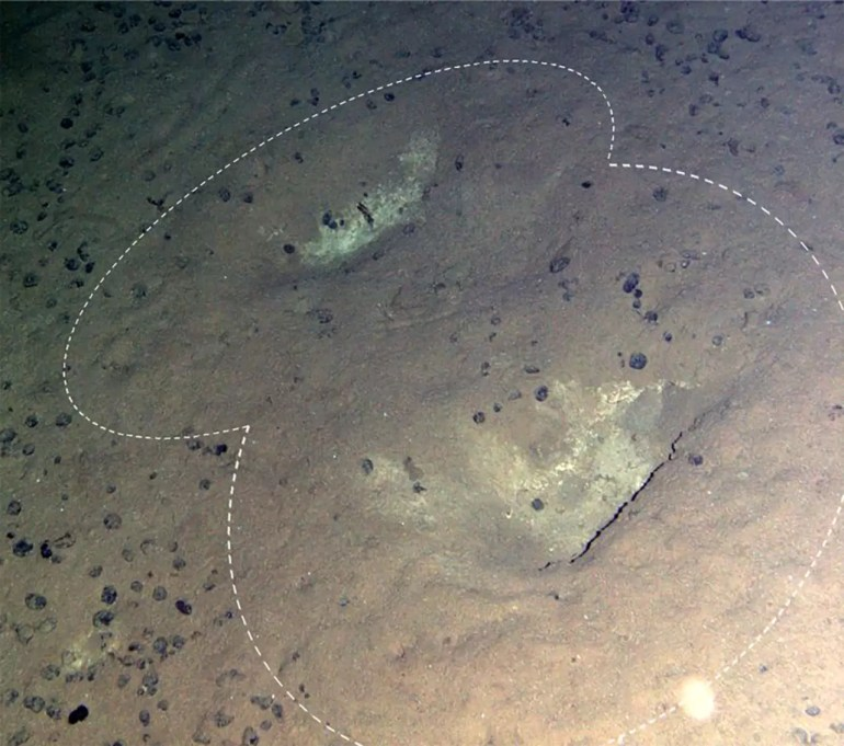 Ślady na dnie Oceanu