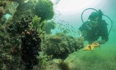 Wznowione zostaną poszukiwania wraku hiszpańskiego galeonu pełnego skarbów z Nowego Świata