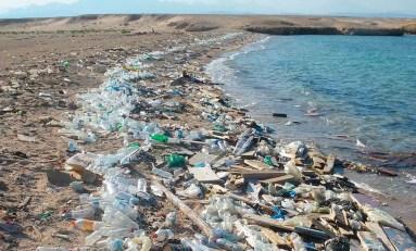 Czy uda się nam oczyścić oceany z plastikowych śmieci?