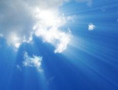 cloud-erp-software-popularity