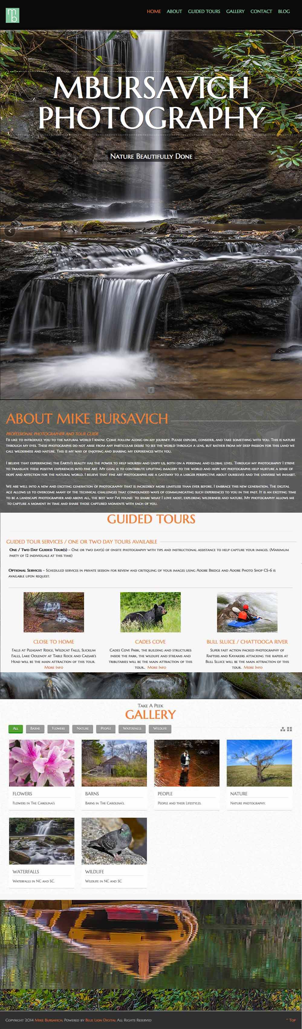 bursavich website entire