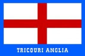steag anglia