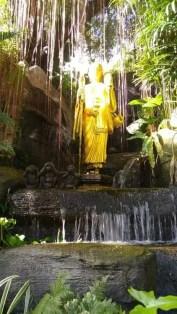 Golden Mount (3)