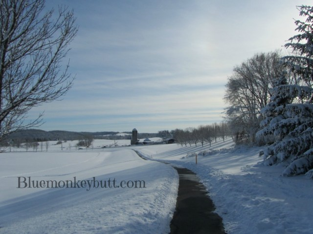 Snowy Farm View from the Park