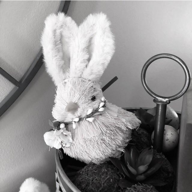 Little chick wearing bunny ears