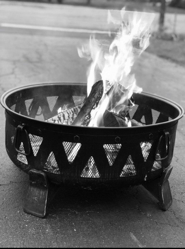 social distancing days 22 & 23 with a Fire in fire pit