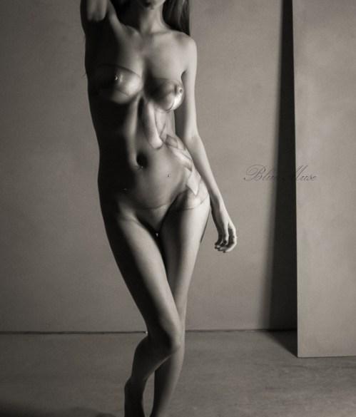 Blue Muse Fine Art with Kelseylinn Davis - bodypaint - Gift Wrapped