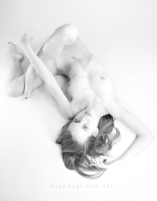 Blue Muse Fine Art with Damianne. Twisted. 2013.