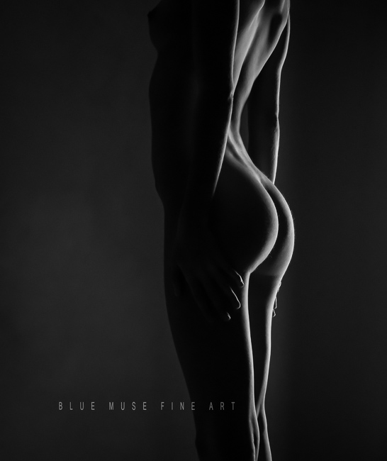 Blue Muse Fine Art with Kelseylinn Davis - Untitled - 2013 - 7152 11-7
