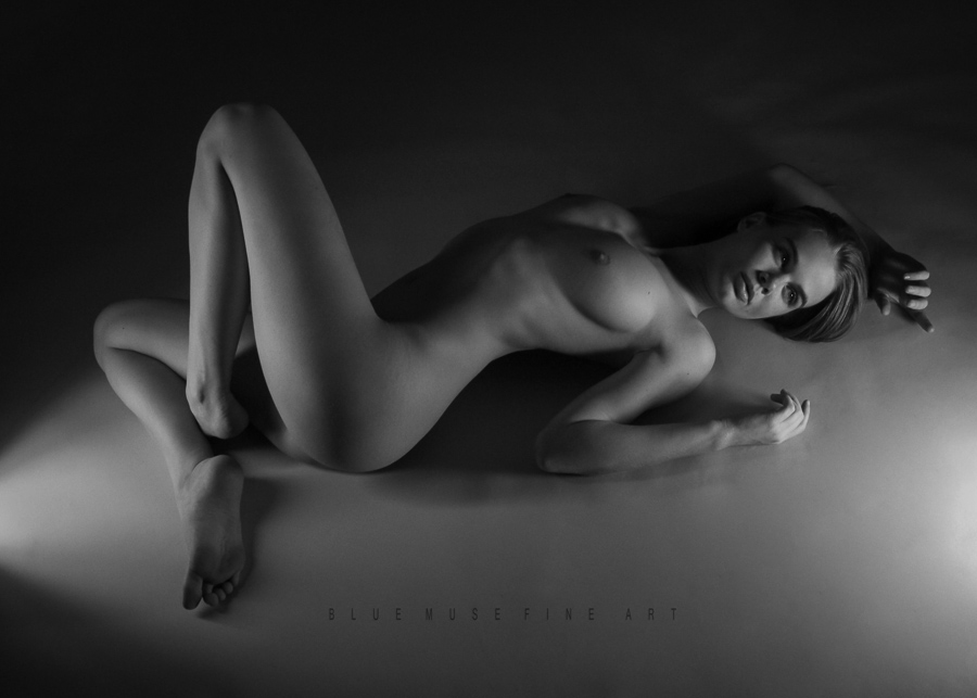 Blue Muse Fine Art with Damianne - Nights of Wonder - 2014.