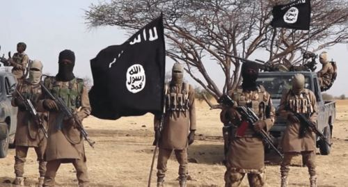Abducted Chibok girl, ISWAP husband, 77 others surrender