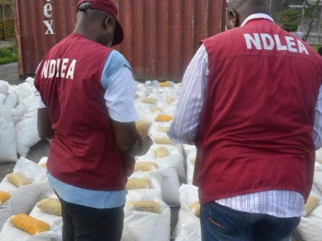 NDLEA nabs 244, convict 21 suspects within 1 year - Commander