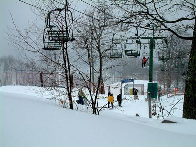 Wintergreen Snow MY-1