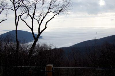 Taylor Valley Fog