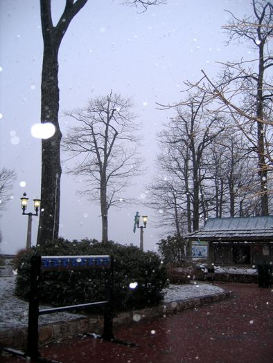 CK-WTG-SNOW-2