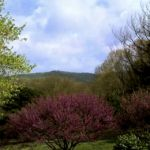WEATHER : WEDNESDAY : Wintergreen & Nelson, VA : Morning Clouds Then Very Nice & Warm!