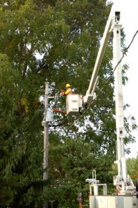 BPL Crews continue to install on their end while waiting on word from Verizon