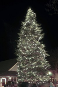 Photo By Paul Purpura ©2008 NCL : Over the weekend some nearly 300 people attended the lighting of the Christmas tree at Wintergreen Resort