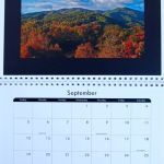 Photographer Develops 2010 Calendar To Benefit Rockfish Wildlife Sanctuary : 11.30.09
