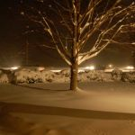 WOW!  What A Night - Winter Storm Hits Nelson Hard! : 12.19.09