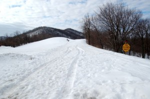 What the BRP looked like as recently as February 21st. This is looking south from the intersection of Reed's Gap at Route 664. Click to enlarge.
