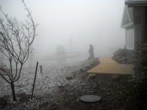 Photo By Kim Smith : Snow falls outside of Wintergreen Real Estate Company on Devil's Knob Friday afternoon.