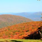 Fall Colors Going Full Blast In Nelson County, VA Mountains
