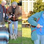 Dogs & Owners Show Their Best At Wintergreen Dog Show In Nellysford