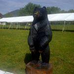 Bear Brigade Strikes In Nellysford