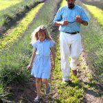 Arrington: Inglewood Lavender Farm Announces Lavender Distilling Process
