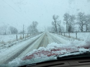 Photo Courtesy of Craig Nargi: Route 608 between Hermitage and New Hope in Augusta County.