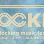 Virginia ABC Fines Lockn' $10,000 For License Violations : Story Via CBS-19