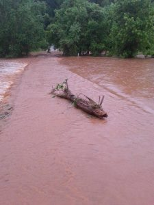 "Jeffery Tomlin couldn't see his driveway or bridge after the 6+"" of rain hit late Thursday in South Nelson County."