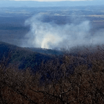 Augusta County : Saturday Afternoon Forest Fire Now Under Control