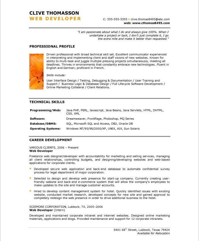 Perfect Web Resume Examples Screenshot How To Create A Great Designer