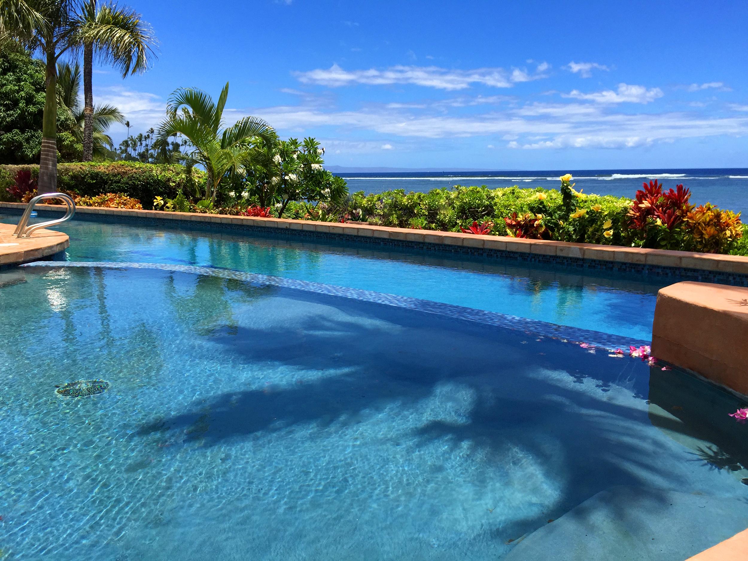 pool near ocean Blue Sky Villa Maui