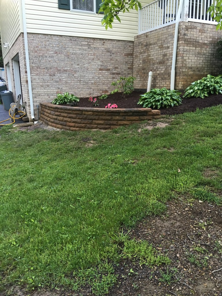 The new retaining wall. Small enough yet it adds so much character and definition.