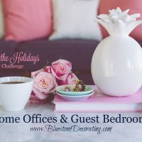 Home Offices & Guest Bedrooms