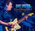 Dave Specter - Six+String+Soul