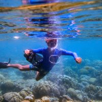 ดำน้ำเกาะพีพี, dive team, snorkeling bubbles eco tour phi phi island
