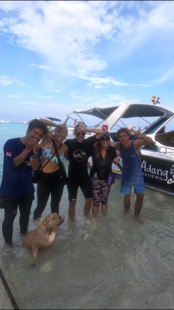 adang divers, whaleshark