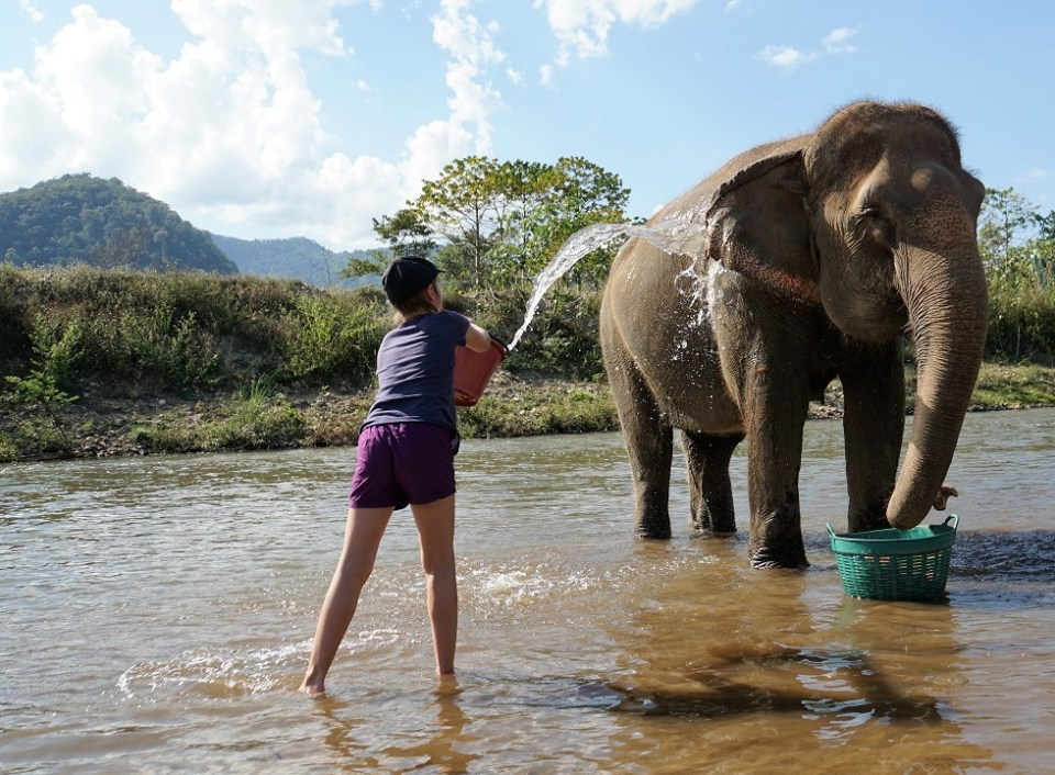 Bathing a happy elephant is so much better than riding on its back