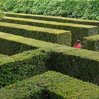 Claire runs through the maze