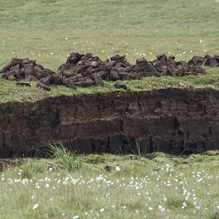Peat stacks drying out