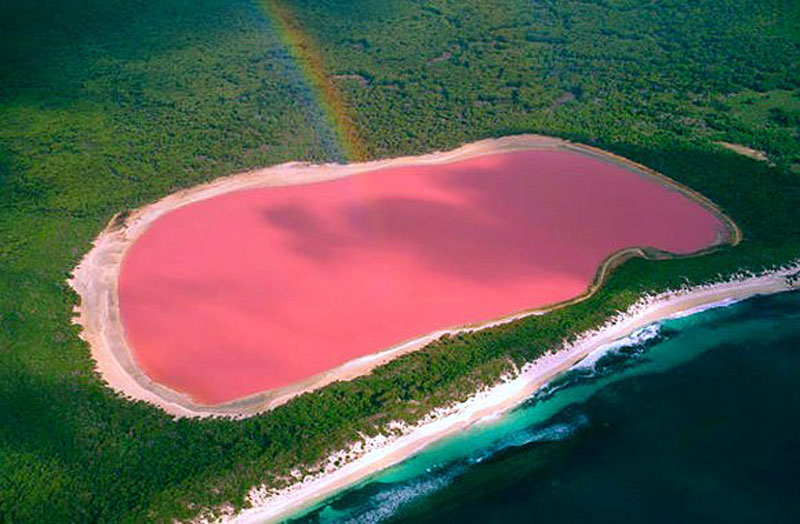 Roze meer Lake Hillier op Middle Island