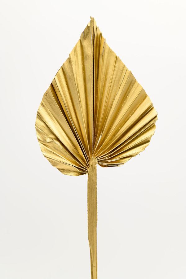 Palmspeer gold